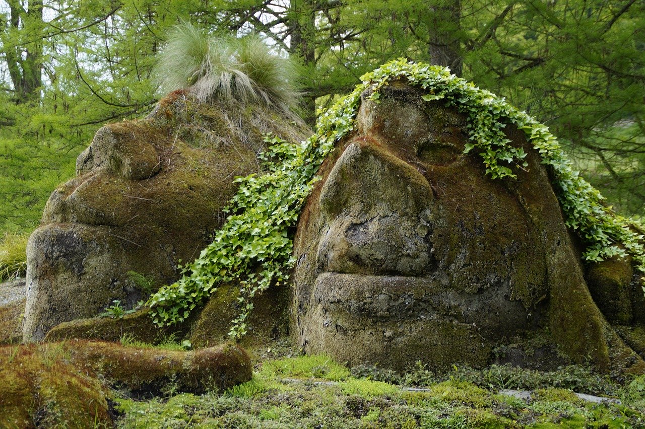 Troll in forest
