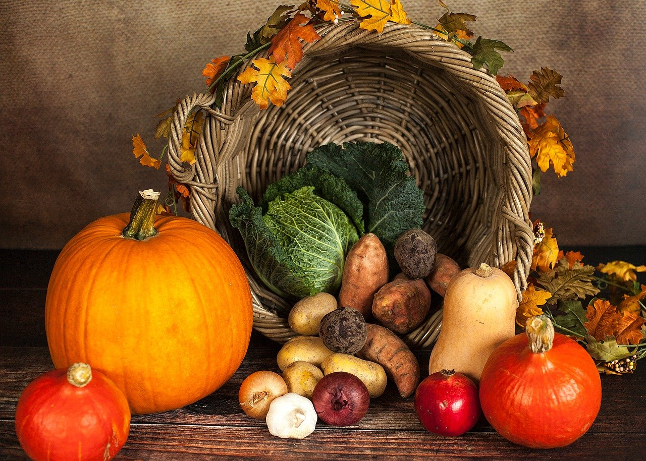 Cornucopia of autumn produce
